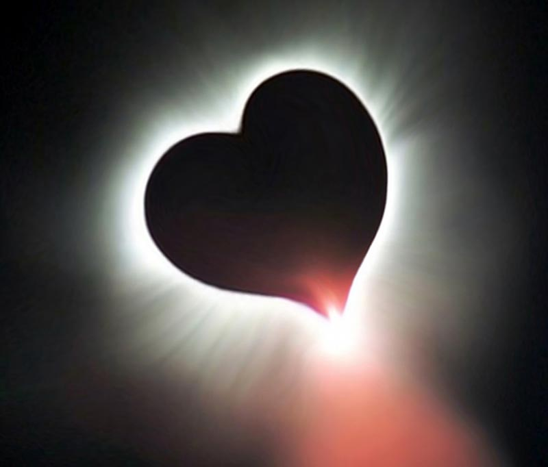 total eclipse of the heart pdf